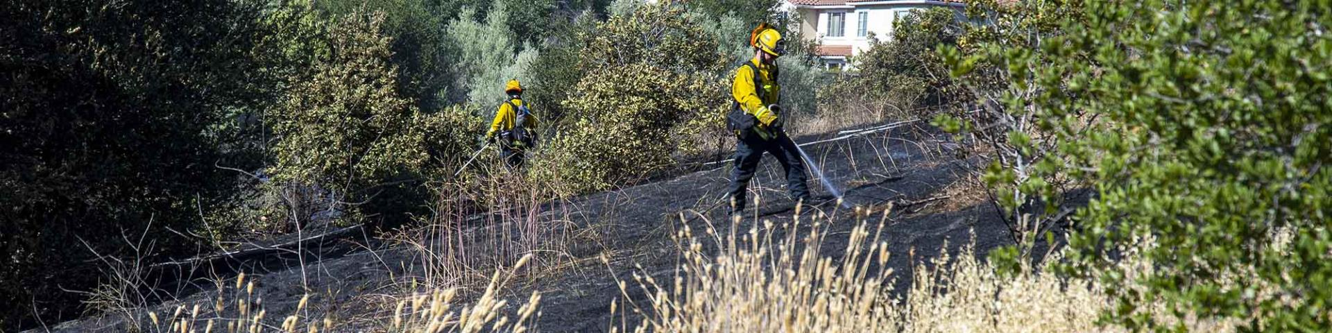 Firefighters extinguish vegetation fire
